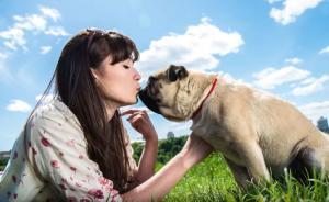 Γιατί δεν πρέπει να φιλάτε τον σκύλο σας στο στόμα