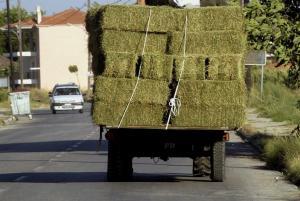 Θεσσαλονίκη: Τριφύλλι έπεσε από φορτηγό και σκότωσε γυναίκα!