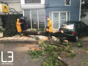 Η κακοκαιρία έριξε δέντρο στη Θεσσαλονίκη [vid]