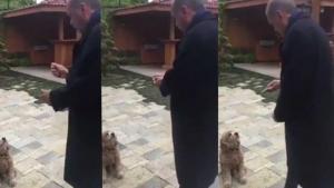 Ο Ερντογάν, το αγγούρι και ο σκύλος – Το video που έγινε viral