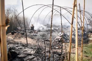 ΣΥΡΙΖΑ: Να στηρίξουμε με όλους τους τρόπους τους εργάτες γης στη Μανωλάδα