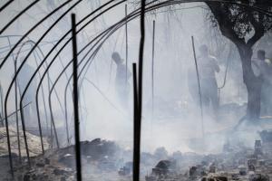 Ζωή στις στάχτες: Αγώνας επιβίωσης για τους εργάτες γης στη Μανωλάδα