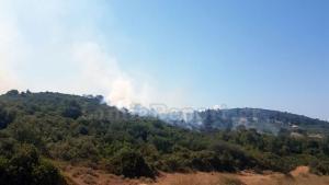 Συναγερμός για φωτιά στην Αταλάντη [vid]