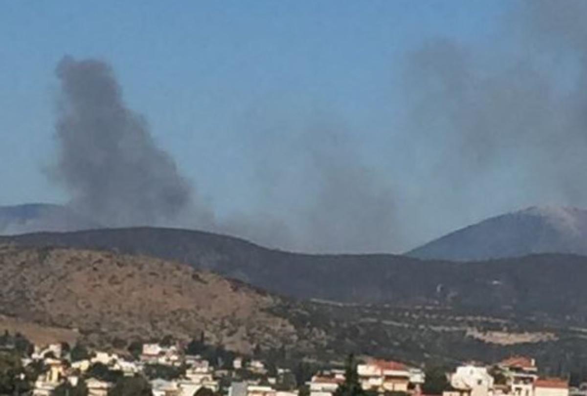 Συναγερμός στην Εύβοια – Μεγάλη φωτιά στον Πισσώνα [pic] | Newsit.gr