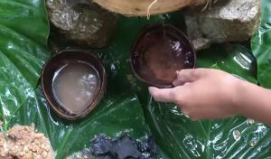 Πώς φιλτράρουν το νερό στη ζούγκλα