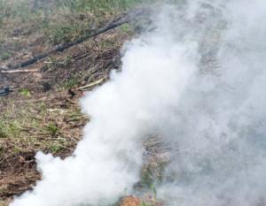 Σέρρες: Συνελήφθη εμπρηστής στο οχυρό του Ρούπελ – Ο στρατός ειδοποίησε την πυροσβεστική!