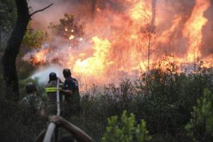 Κορινθία: Σε εξέλιξη οι μεγάλες φωτιές στις περιοχές Ζεμενό και Θροφάρι στο Ξυλόκαστρο [pics, video]
