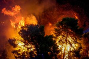 Φωτιές Αττική: Με μαύρες φανέλες στην Ιταλία! Κίνηση συμπαράστασης στην Ελλάδα [pic]