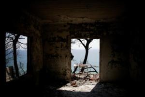 Στο πλευρό των πληγέντων από τις πυρκαγιές η ΕΟΕ
