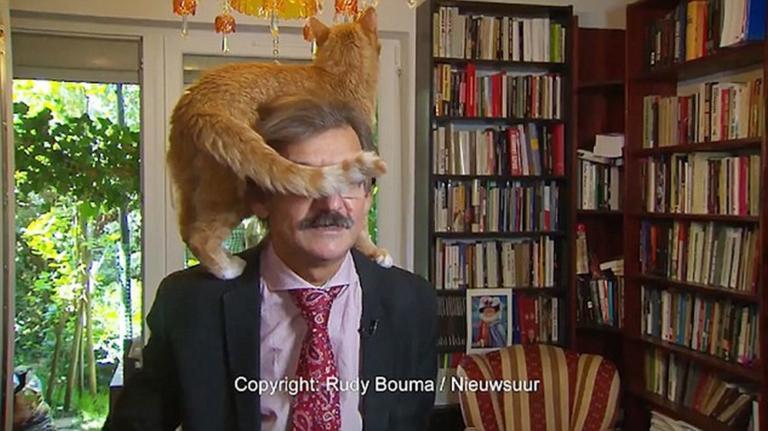 Επική αντίδραση! Έδινε live συνέντευξη και σκαρφάλωσε η γάτα στο κεφάλι του – video | Newsit.gr