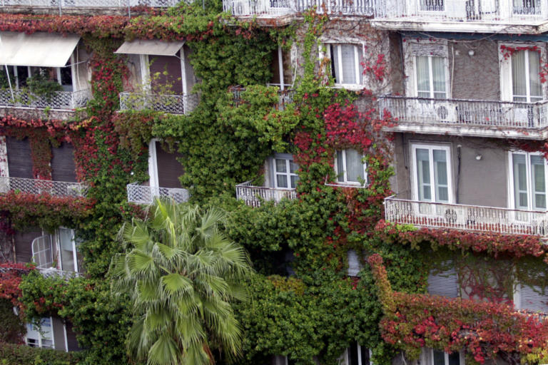 Airbnb: Σαφάρι από την εφορία – Οι «πελάτες» που καίνε τους ιδιοκτήτες ακινήτων | Newsit.gr