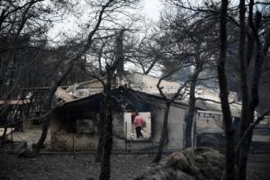 Google: Σελίδα για τους αγνοούμενους από τις φωτιές στην Αττική