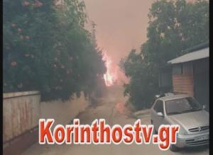 Κόρινθος: Σε εξέλιξη η φωτιά στις περιοχές Ζεμενό και Θροφάρι – video