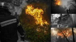 Μεγάλη φωτιά στην Κινέτα! Συνεχείς αναζοπυρώσεις και βιβλική καταστροφή! Ολονύχτια μάχη με τις φλόγες – video