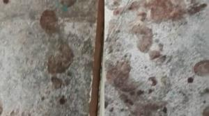 Μάτι – Σκληρές εικόνες: Ματωμένα ανθρώπινα σημάδια στο δρόμο – video