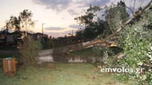 Ημαθία: Η ανεμοθύελλα σάρωσε τον οικισμό των Τρικάλων – Ζημιές σε υποδομές και περιουσίες!