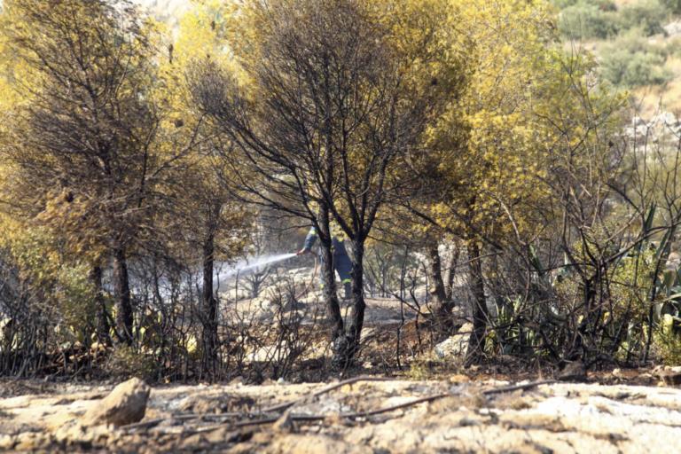 Μεσολόγγι: Φωτιά μαίνεται κοντά στον αρχαιολογικό χώρο των Οινιαδών