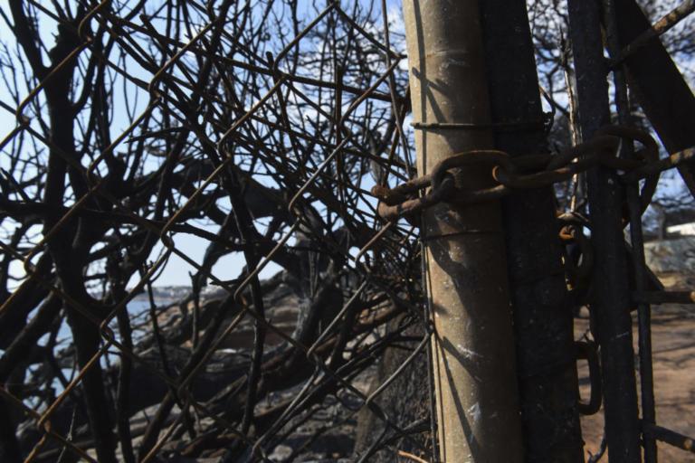 Υπάρχουν ακόμη 25 αγνοούμενοι! Ανακοινώσεις της Πυροσβεστικής | Newsit.gr