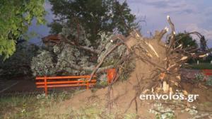 Ημαθία: Μετρούν τις πληγές τους από την ισχυρή ανεμοθύελλα – «Μας θύμισε αμερικανικούς τυφώνες»