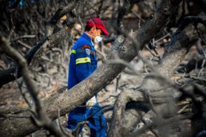 Εθελοντές πυροσβέστες: Δεν μείναμε νηστικοί στην πυρκαγιά της Ανατολικής Αττικής