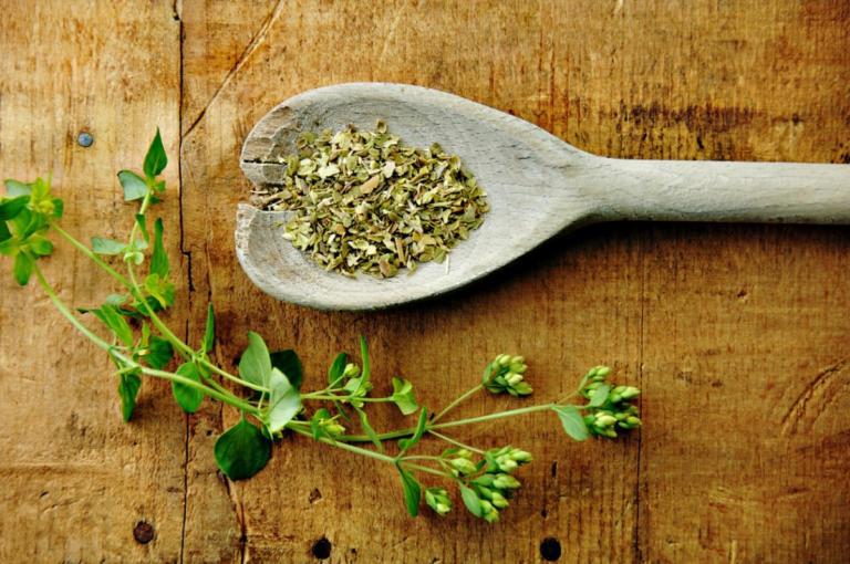 Πού βοηθάει η ρίγανη: Θεραπευτικές και θρεπτικές ιδιότητες | Newsit.gr