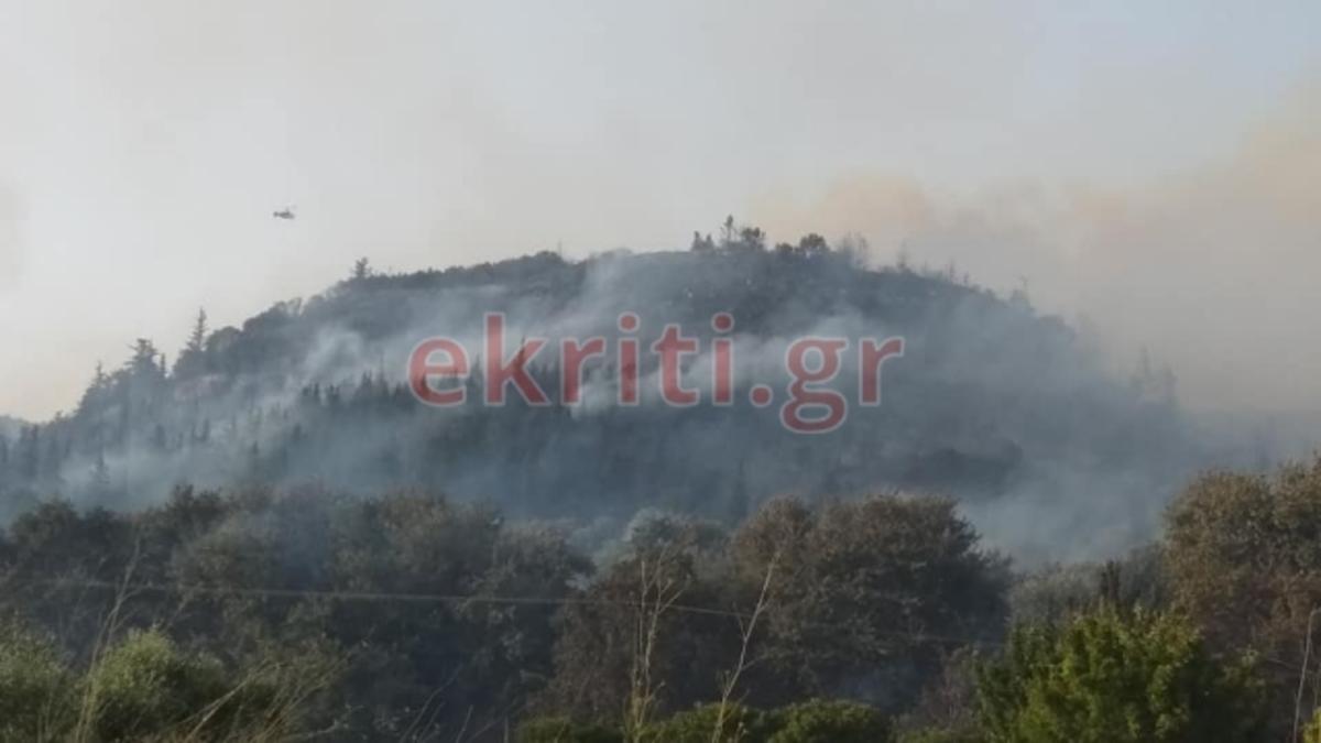 Κρήτη: Χιλιάδες στρέμματα έγιναν στάχτη στη μεγάλη φωτιά | Newsit.gr