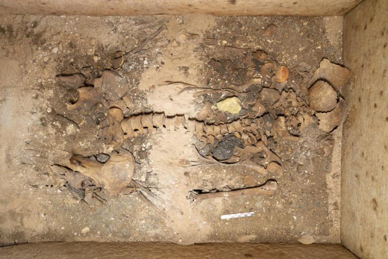 Βρέθηκε ασύλητος τάφος επιφανούς γυναίκας στη Σίκινο [pics] | Newsit.gr