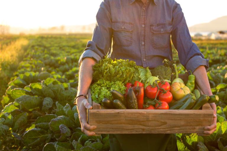 Βιολογικά τρόφιμα: Είναι πιο θρεπτικά; Τι κερδίζετε; Τι δείχνουν οι έρευνες [vid] | Newsit.gr
