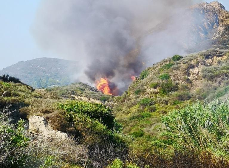 Υπό μερικό έλεγχο η φωτιά στη Ζάκυνθο – Μεγάλη επιχείρηση από αέρος | Newsit.gr