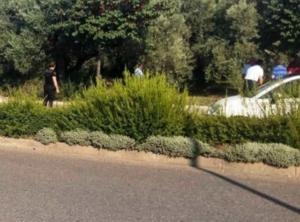 Αγρίνιο: Κρεμάστηκε σε ελιά επί της οδού Πανεπιστημίου – Σκληρές εικόνες στο σημείο μετά την αυτοκτονία!