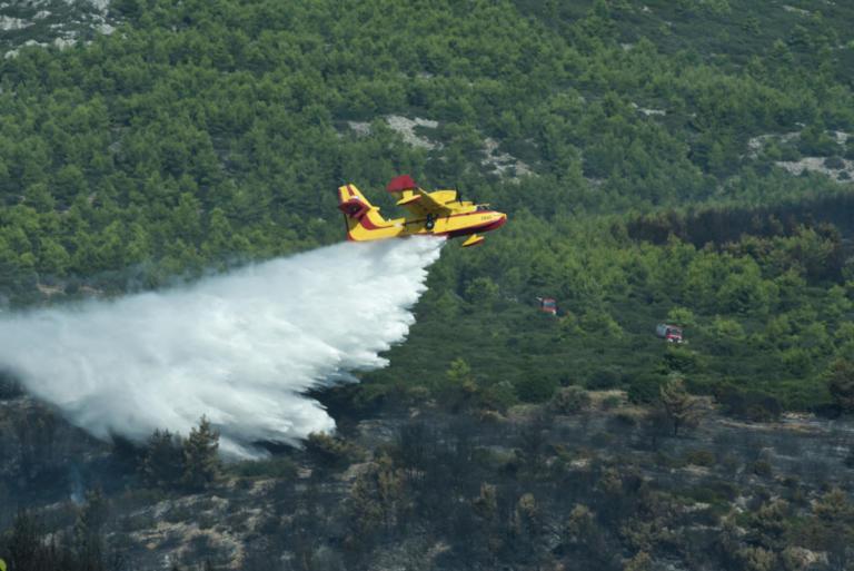 Καβάλα: Υπό μερικό έλεγχο η φωτιά – Συνεχίζεται η μάχη των πυροσβεστών στο σημείο! | Newsit.gr