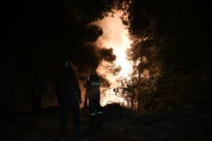 Εύβοια: Στο νοσοκομείο ένας πυροσβέστης που επιχειρούσε στη μεγάλη φωτιά