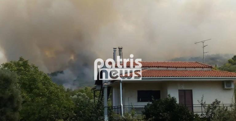 Φουντώνει η φωτιά στην Αμαλιάδα – Εκκενώθηκε το χωριό Δαφνιώτισσα | Newsit.gr