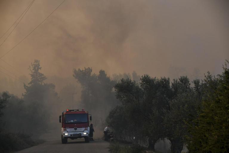 Μεγάλη αναζωπύρωση στην Εύβοια – Η φωτιά καίει πλέον σε δύο μέτωπα – Νέος συναγερμός στην Πυροσβεστική | Newsit.gr