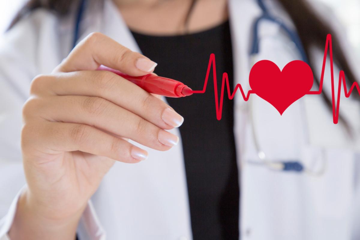 Καρδιά: 20 εκπληκτικά δεδομένα που όλοι πρέπει να γνωρίζουμε | Newsit.gr