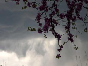 Καιρός: Και ξαφνικά… φθινόπωρο! «Βουρκωμένη» Δευτέρα με βροχές και καταιγίδες