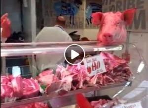 Κρεοπώλης πήρε στο κυνήγι vegan ακτιβιστές με μπριζόλες! – video