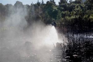 Σύλληψη άνδρα για τη φωτιά στην Κρήτη