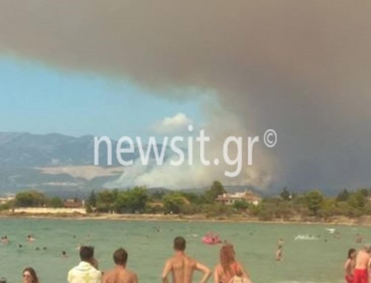 Συγκλονιστικές φωτογραφίες από την Εύβοια – Αεροπλάνα κάνουν βουτιές και κόβουν την ανάσα! [pics] | Newsit.gr