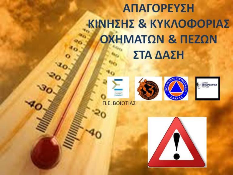 Δήμος Θηβαίων: Σε ποιες περιοχές απαγορεύεται η κυκλοφορία οχημάτων και πεζών, λόγω κινδύνου εκδήλωσης πυρκαγιάς | Newsit.gr