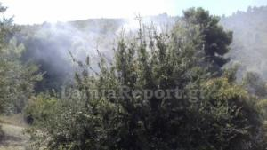 Φθιώτιδα: Δύο φωτιές σε απόσταση ενός χιλιομέτρου