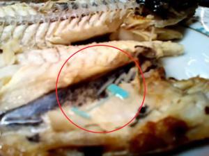 Κρητικός βρήκε κομμάτι ετικέτας ρούχων μέσα στο ψάρι του! [pics]