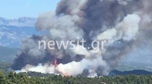 Φωτιά στην Εύβοια – Συνεχείς εκκενώσεις – Το χρονικό της πυρκαγιάς