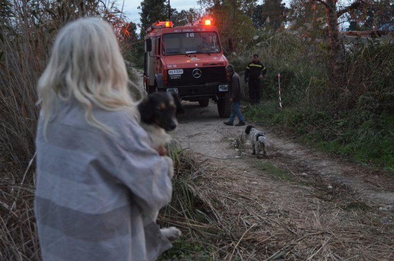 Νέα πυρκαγιά στη Ζάκυνθο! Πέντε φορές έχει καεί το ίδιο σημείο μέσα σε λίγες μέρες   Newsit.gr
