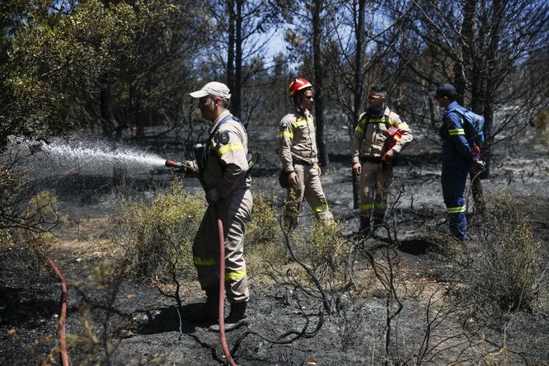 Μεγάλη φωτιά στην Σαρωνίδα   Newsit.gr