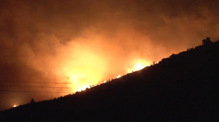 Κρήτη: Δύο συλλήψεις για τη φωτιά στις Αρχάνες   Newsit.gr