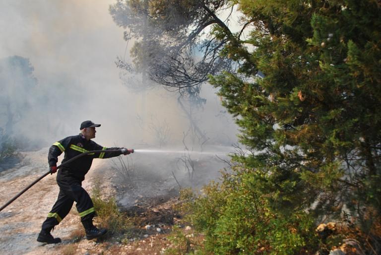 Φωτιά Ζάκυνθος: Σε ύφεση τα μέτωπα – Σε ετοιμότητα οι αρχές | Newsit.gr