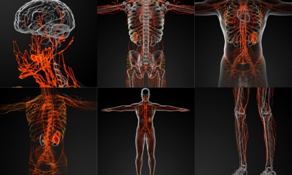 """Τα """"αθώα"""" συμπτώματα από την αταξία γλουτένης που προσβάλλει το νευρικό σύστημα – Προσοχή!   Newsit.gr"""