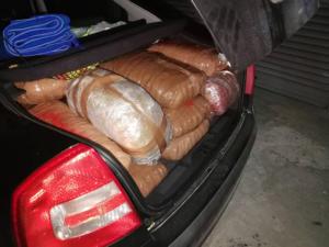 «Μπλόκο» σε 246 κιλά κάνναβης στην Ήπειρο [pics]