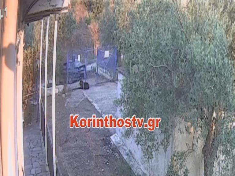 Αρχαία Κόρινθος: Καρέ καρέ η κλοπή σε εξοχική κατοικία – Video | Newsit.gr